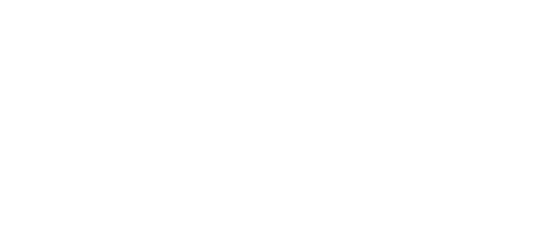 Pietro Fiorentini logo